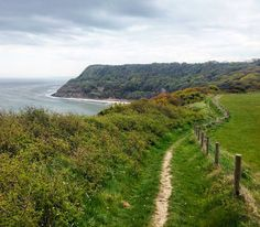 ENGLAND / ANGLETERRE Randonnée le long des falaises  #omgb  #lovegreatbritain by chris_voyage #travel