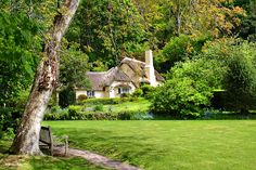 Cosy Cottage in Selworthy Green, Somerset, England, UK