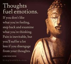 Control your emotions and hence your suffering