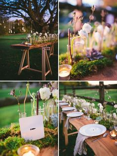 rustic table setting with test tube vases, ranunculus, moss and succulents.