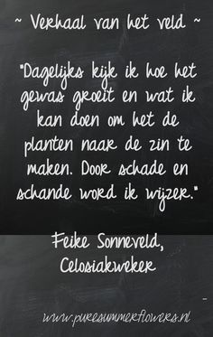 Kort verhaal over zomerbloemen. Quote celosiakweker.     This quote courtesy of @Pinstamatic (http://pinstamatic.com)
