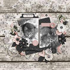 Dagi's Temp-tations - Summer Breeze Cat Sketch, Summer Breeze, Friendship Bracelet Patterns, Flourish, Eat Cake, Digital Scrapbooking, Sisters, Pets, Animals