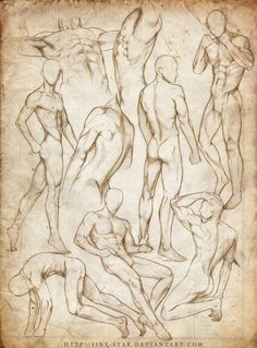 +MALE BODY STUDY VII+ by =jinx-star on deviantART Ignore the nakedness.just trying to get a hold on the body type Body Drawing, Anatomy Drawing, Life Drawing, Figure Drawing, Human Anatomy, Anatomy Male, Body Anatomy, Drawing Art, Body Sketches