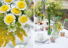 Gelb weiße Blumen