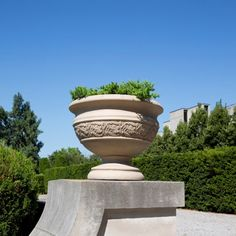Featuring a traditional Mediterranean Urn design, the VENETIAN URN is the ideal statement piece for any front or back yard. Characterized by a textured hand applied stone finish, the VENETIAN URN is the perfect planter to complete any front entrance, Resin Planters, Urn Planters, Garden Urns, Resin Flowers, Marquis, Venetian, Flower Pots, Backyard, Outdoor Decor