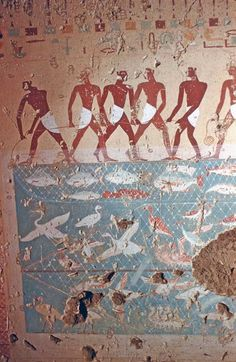 Tomb of Antefoqer (TT60), reign of Amenemhat I and Senuseret I: fishing