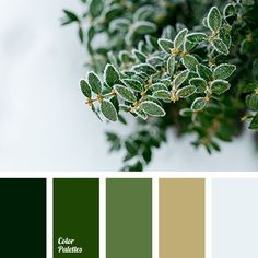 Green and gold wedding color palette -- gorgeous for a Baylor alumni wedding!