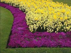 Invisible flower bed borders are simple and attractive
