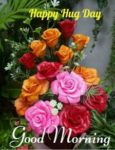 Good Morning Flowers, Good Morning Images, Good Morning Quotes, Valentine Day Week, Happy Hug Day, Zindagi Quotes, Messages, Rose, Birthday