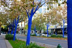 Sacramento, USA, 2012  © Leigh