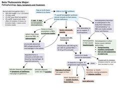 Beta Thalassemia Major: Signs, Symptoms and Treatment Medical Facts, Medical Information, Beta Thalassemia, Brain Book, Medical Laboratory Science, Nursing Notes, Internal Medicine, Nurse Practitioner, Biochemistry