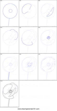How to Draw Poppy Flower Printable Drawing Sheet by DrawingTutorials101.com