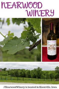 Nearwood Winery and Vineyards is the perfect winery nestled along Highway 14 in Knoxville, Iowa #NearwoodWinery #ad via @lifewithheidi
