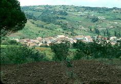 granja-nova -caldas da rainha  landschaft der estremadura in portugal