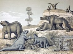 1862 Dinosaurs and Pterosaurs photo prints and wall art from Science Photo Library. Lithograph with later hand colouring combining two of Benjamin Waterhouse Hawkins six wall posters Waterhouse Hawkins Extinct Animals, Prehistoric Animals, Fine Art Prints, Framed Prints, Canvas Prints, Science Photos, Sculptures For Sale, Photo Library, Poster Size Prints