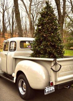 tree 'n a truck