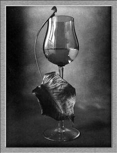 Klikněte pro zavření okna Wine Glass, Tableware, Dinnerware, Tablewares, Dishes, Place Settings, Wine Bottles