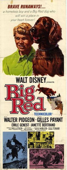Big Red Disney Movie Poster