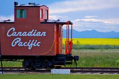 Canadian Pacific script end-cupola van and canola. Canadian National Railway, Canadian Pacific Railway, Ho Trains, Model Trains, Freight Transport, Ground Transportation, Railroad History, Canada Eh, Rail Car