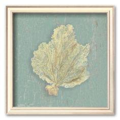 """Art.com """"Sea Fan"""" Framed Art Print by Lisa Danielle, kohls, guest bath?"""