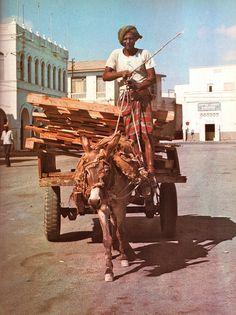 Djibouti Donkey Cart