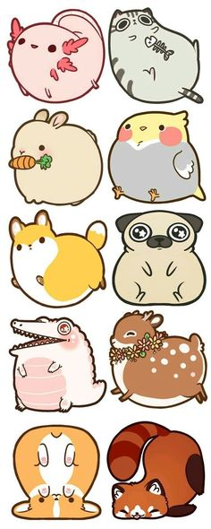 by Rebecca and Damien Bakels-Murphy — Kickstarter - Fat Animal Acrylic Charms~! by Rebecca and Damien Bakels-Murphy — Kickstarter Fat Animal Acrylic -