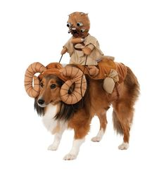 It's a Cool Star Wars Bantha Rider Pet Costume. Sensational ideas of Star Wars Pet Costumes for Halloween at PartyBell. Chien Halloween, Star Wars Halloween, Pet Halloween Costumes, Pet Costumes, Dog Halloween, Costume Ideas, Halloween Halloween, Costumes 2015, Trendy Halloween