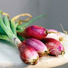 19 best heirloom plants | 'Red of Florence' onion | Sunset.com
