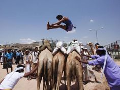 20 August 2013: A Bedouin man jumps over camels during the Sanaa Summer Fes - The Independent