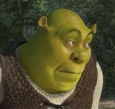 I'm usually the one cursing while my frens are shrek. Memes Shrek, Dankest Memes, Funny Memes, Jokes, Funny Shit, Funny Posts, The Funny, Hilarious, Funny Stuff