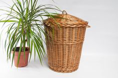 Vintage wicker waste paper basket, bathroom trash can, garbage bin, trash can, trash bin, basket bin, office trash can, tall wicker basket by VintageEuropeDesign on Etsy
