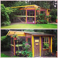 Love this brightly coloured chicken coop