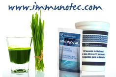 Improve Your Immune System and Optimize Your Quality of Life  Immunocal is a natural protein that addresses several critical factors affecting your quality of life. Immunocal can:  Increase your ability to fight off free radicals through optimizing you antioxidation ability Strengthen your immune defenses Help properly deal with pollutants and toxins in your body  http://www.immunotec.com/IRL/Public/en/USA/science_understanding_a3.wcp  #immunocal #immunotec #Antioxidant