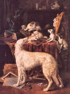 z- Borzois w Cat & Kittens