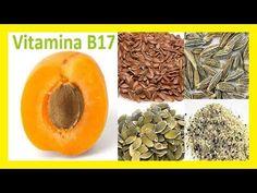 La semilla de manzana. Cura del cancer. Vitamina B17 - YouTube