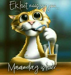 Maandag is hier Lekker Dag, Afrikaanse Quotes, Goeie Nag, Goeie More, Monday Quotes, Good Night Quotes, Cat Pattern, Happy Monday, Picture Photo