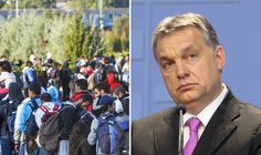 """Hungarian PM hails 'common sense' move to cap migrant numbers as crisis spirals  A EUROPEAN Prime Minister has sparked outrage by saying """"the best migrant is one that does not come"""".  By LIZZIE STROMME PUBLISHED: 00:00, Sat, Jan 23, 2016  Migrant crisis in Europe and Viktor Orban"""
