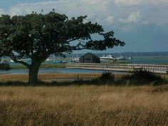 Newtown Harbour, Isle of Wight, England