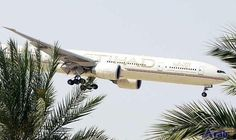 IATA: UAE airlines' profits may decline this…