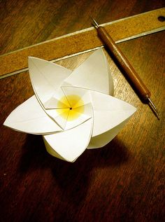 Origata origami.. Amazing frangipani fold from one piece of paper. With pattern.