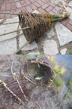 Primitive Funnel Basket Trap - Made From Items in the Woods | The Homestead Survival