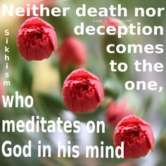 Neither death nor deception comes to the one, who meditates on God in his mind  Sikhism Guru Granth Sahib Ji,8 Source:http://www.realsikhism.com/index.php?action=quotes=22=Meditation%20and%20Worshipping%20God  Photo by: Love is the Secret