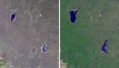 The effects of California's severe multiyear drought