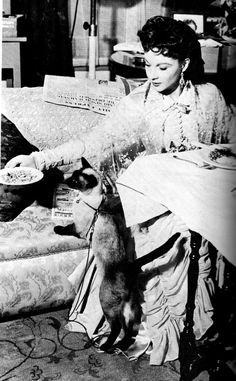 """Vivien Leigh in costume for her role as Anna Karenina with her Siamese cat """"New Boy"""""""