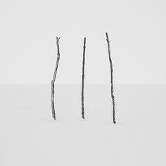Área Visual - Blog de Arte y Diseño: Troy Moth, Fotografiando la naturaleza