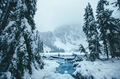Pacific Northwest.
