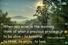 """""""When you arise in the morning, think of what a precious privilege it is to be alive – to breathe, to think, to enjoy, to love."""" - Marcus Aurelius"""