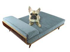 Cairu Design Modern Dog Beds