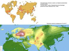Marea migraţie: Cucuteni-Tripolie, Yangshao, Ban-Chiang, Jomon, Valdivia, Anasazi-Mogollon Diagram, Map, World, Location Map, Maps, The World