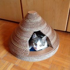 Make a design cat bed upcycling all the cardboard that you don't need anymore! #catsdiyscratcher